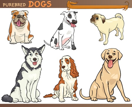 pedigreed: Cartoon Comic Illustration of Canine Breeds or Purebred Dogs Set Illustration