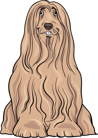 Cartoon Illustration of Cute Bearded Collie Purebred Dog Stock Vector - 17222610