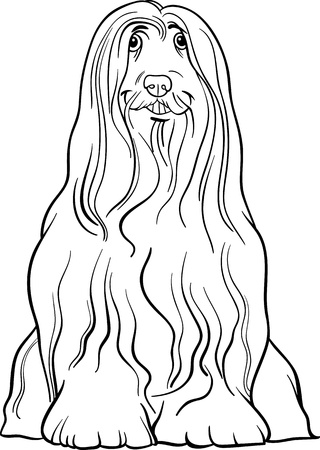 collie: Black and White Cartoon Illustration of Cute Bearded Collie Purebred Dog for Coloring Book