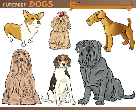 pembroke: Cartoon Comic Illustration of Canine Breeds or Purebred Dogs Set Illustration