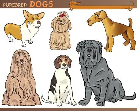 pembroke welsh corgi: Cartoon Comic Illustration of Canine Breeds or Purebred Dogs Set Illustration
