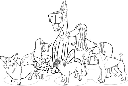 afghan hound: Black and White Cartoon Illustration of Cute Purebred Dogs or Puppies Group for Coloring Book
