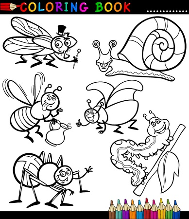 Black and White Coloring Book or Page Cartoon Illustration Set of Funny Insects and Bugs for Children Vector