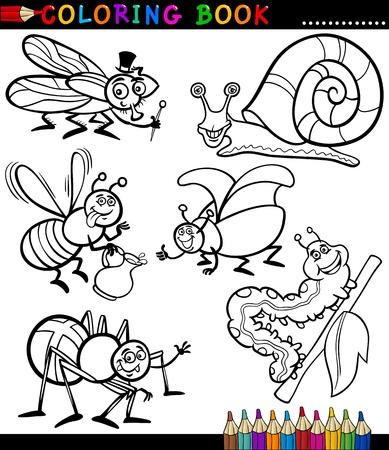 bruchi: In bianco e nero da colorare Libro o Pagina Cartoon Illustrazione Set di insetti divertente e Bugs per i bambini Vettoriali