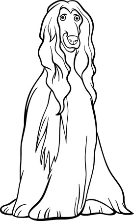 afghan hound: Black and White Cartoon Illustration of Cute Afghan Hound Purebred Dog for Coloring Book