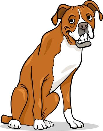 perro boxer: Ilustración de dibujos animados de perro de pura raza Boxer Divertido