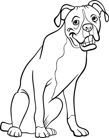 boxer dog: Black and White Cartoon Illustration of Funny Boxer Purebred Dog for Coloring Book