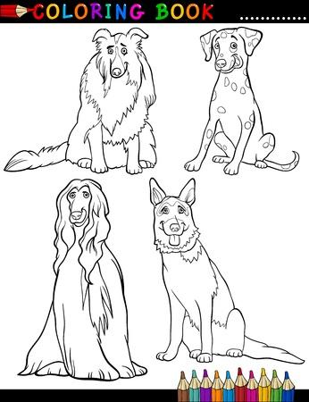 afghane: Malbuch Black and White Cartoon Illustration von Cute reinrassige Hunde