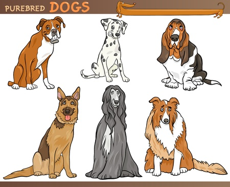 pedigree: Cartoon Comic Illustration of Canine Breeds or Purebred Dogs Set Illustration
