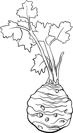 celery: Black and White Cartoon Illustration of Celery Root Vegetable Food Object for Coloring Book