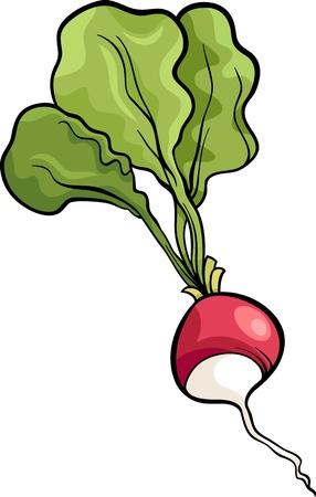 Cartoon Illustratie van Radijs Plantaardig Voedsel Object Vector Illustratie