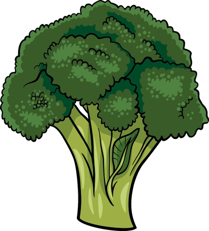 broccoli salad: Cartoon Illustration of Broccoli Vegetable Food Object