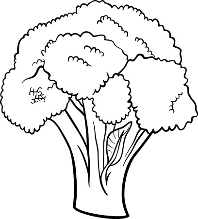 fresh salad: Black and White Cartoon Illustration of Broccoli Vegetable Food Object for Coloring Book