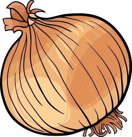 cartoon onion: Cartoon Illustration of Onion Root Vegetable Food Object