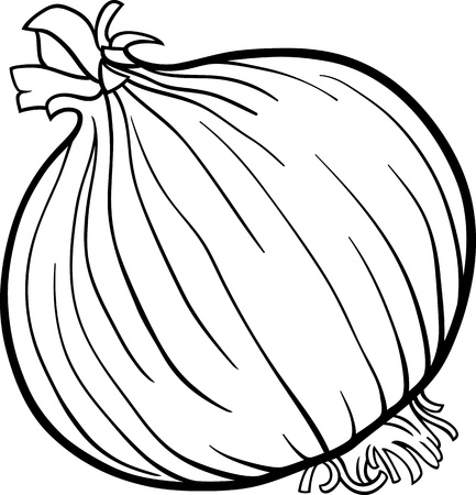 onion: Black and White Cartoon Illustration of Onion Root Vegetable Food Object for Coloring Book Illustration