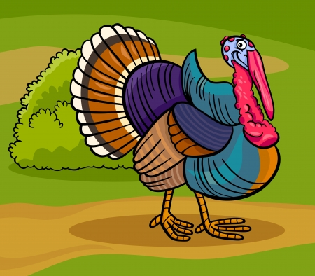 Cartoon Illustration of Funny Comic Turkey Farm Bird Animal Stock Vector - 19158087