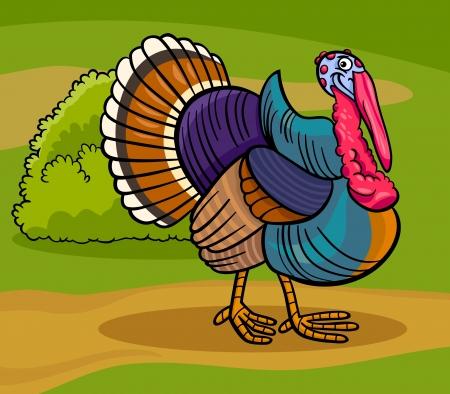 Ilustración de dibujos animados de Funny Comic Turkey Farm Animal Bird Foto de archivo - 19158087
