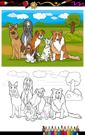 Cartoon Illustration of Funny Purebred Dogs like German Shepherd, Collie, Dalmatian, Basset Hound, Afghan Hound and Boxer for Coloring Book Vector