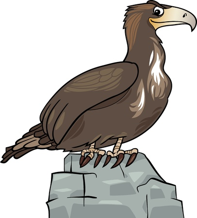 Cartoon Illustration of Eagle Wild Bird on the Rock Vector