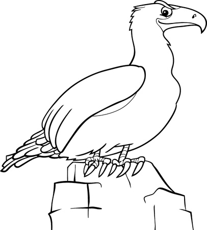 Black and White Cartoon Illustration of Eagle Bird for Coloring Book Vector