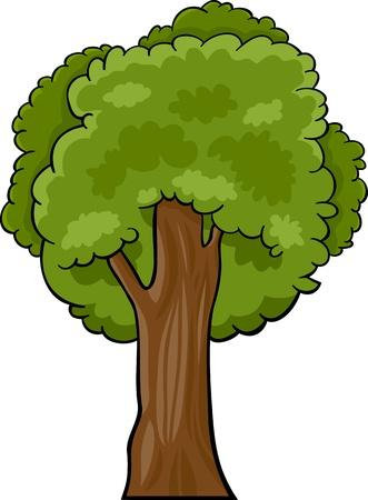 beech: Cartoon Illustration of Green Deciduous Tree or Oak, Beech or Maple
