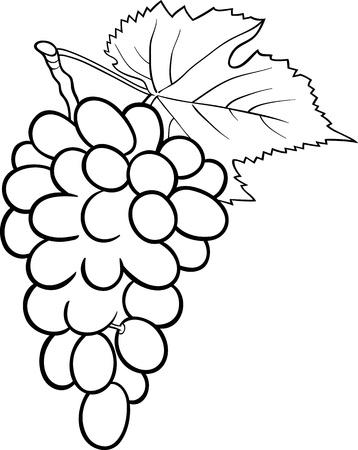 dibujos para colorear: Blanco y Negro Ilustraci�n de la historieta de racimo de uvas o frutas Grapevine Objeto Alimentos para Coloring Book