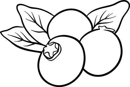 dibujos para pintar: Blanco y Negro Ilustraci�n de dibujos animados de Frutas Ar�ndano Objeto Alimentos para Coloring Book
