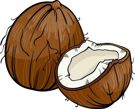 Cartoon Illustration of Coconut or Cocoanut Food Object
