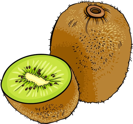 diet cartoon: Cartoon Illustration of Kiwi Fruit Food Object