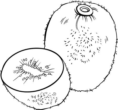 kiwi fruit: Blanco y Negro Ilustraci�n de la historieta de la fruta de kiwi objeto Alimentos para Coloring Book Vectores