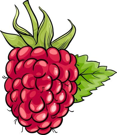 berry fruit: Cartoon Illustration of Raspberry Berry Fruit Food Object
