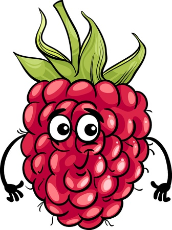 Cartoon Illustration of Funny Raspberry Fruit Food Comic Character Vector