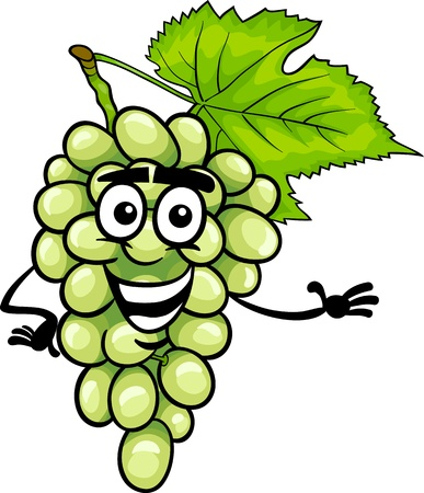 Cartoon Illustration of Funny White or Green Grapes Fruit Food Comic Character Ilustração