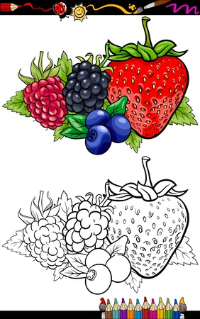 blackberries: Coloring Book or Page Cartoon Illustration of Four Berry Fruits like Blueberry and Blackberry and Raspberry and Strawberry Food Group for Children Education Illustration