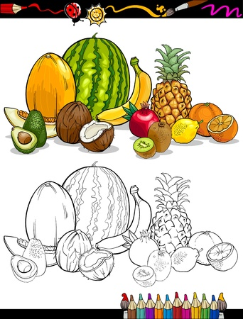 avocado: Coloring Book or Page Cartoon Illustration of Tropical Fruits Food Group for Children Education