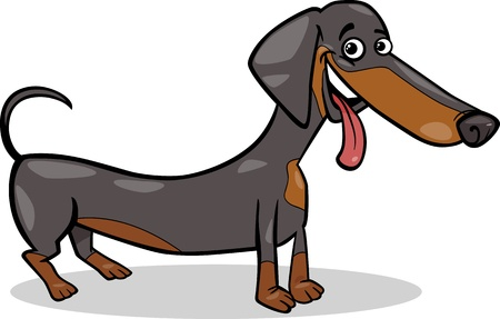 black dog: Cartoon Illustration of Cute Purebred Dachshund Dog