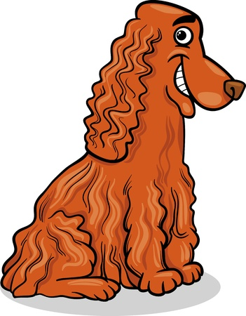 spaniel: Cartoon Illustration of Funny Purebred Cocker Spaniel Dog Illustration