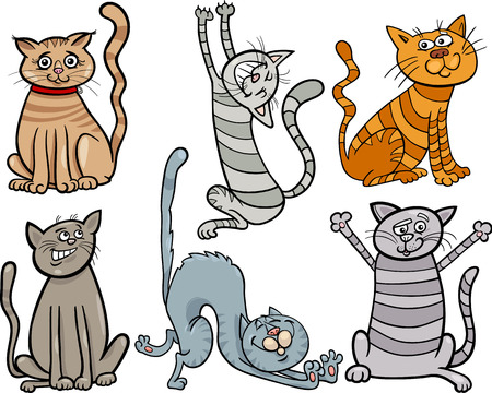 caricature cat: Cartoon Illustration of Cute Cats or Kittens Pet Set Illustration
