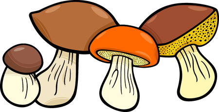 mushroom illustration: Cartoon Illustration of Mushrooms Food Objects Group