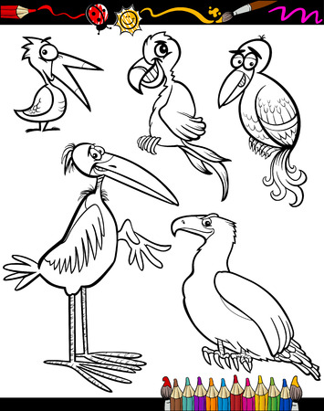 Coloring Book or Page Cartoon Illustration Set of Black and White Birds Animals Mascot Characters for Children Vector