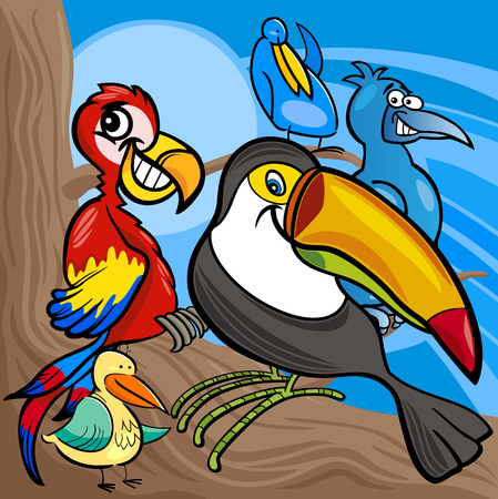 Funny Colorful Birds Characters Group Vector