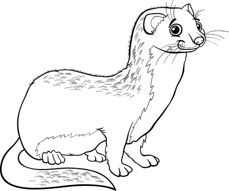 Black and White Cartoon Illustration of Cute Weasel Animal for Coloring Book Vector