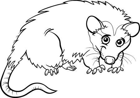 opossum: Black and White Cartoon Illustration of Cute Opossum Animal for Coloring Book Illustration
