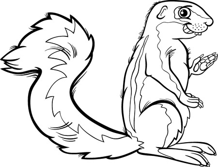 Black and White Cartoon Illustration of Funny Xerus Animal for Coloring Book Vector