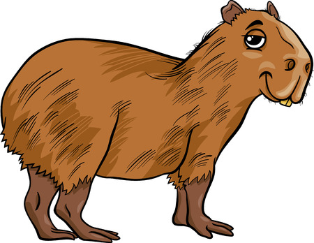 biggest animal: Cartoon Illustration of Funny Capybara Animal
