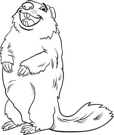 marmot: Black and White Cartoon Illustration of Funny marmot Animal for Coloring Book Illustration
