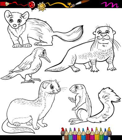 nutria caricatura: Coloring Book o página Ilustración de dibujos animados Blanco y Negro Animales Chatacters para Niños