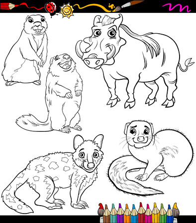 mongoose: Coloring Book or Page Cartoon Illustration of Black and White Wild Animals Characters for Children