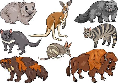wombat: Cartoon Ilustración de divertidos Animales salvajes Personajes Set