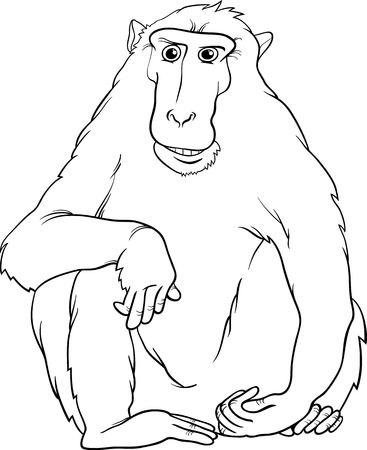 primate: Black and White Cartoon Illustration of Funny Macaque Monkey Primate Animal for Coloring Book Illustration